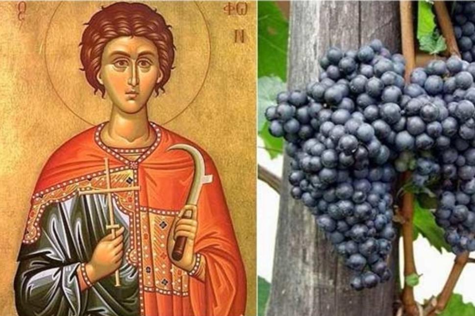 Може ли данас Свети Трифун да се заљуби, а Свети Валентин да се напије?