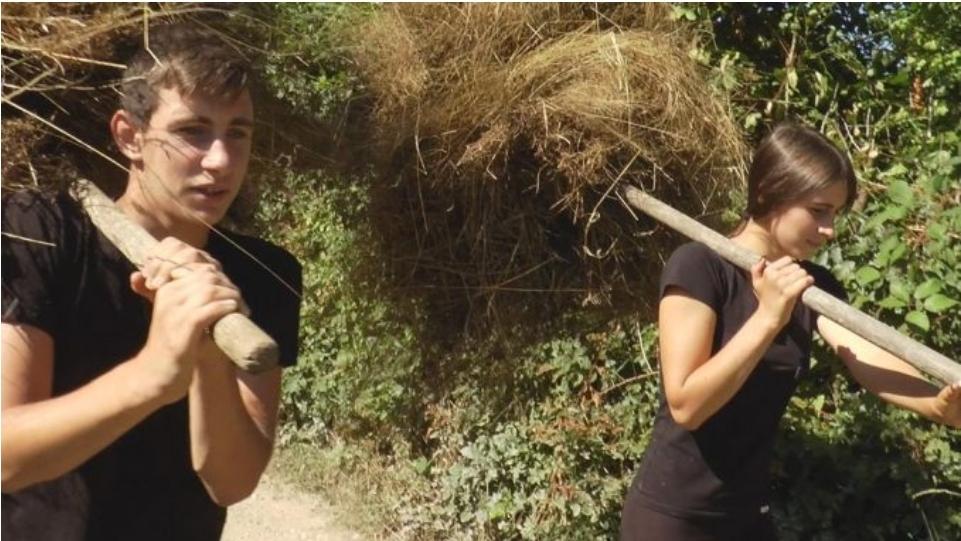 Милена и Милан остали без оца, живе сами са баком и обрађују 5 хектара земље (ФОТО)
