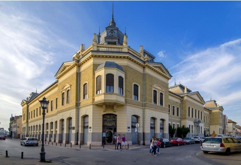 Матица српска – Најстарија и најважнија институција Срба
