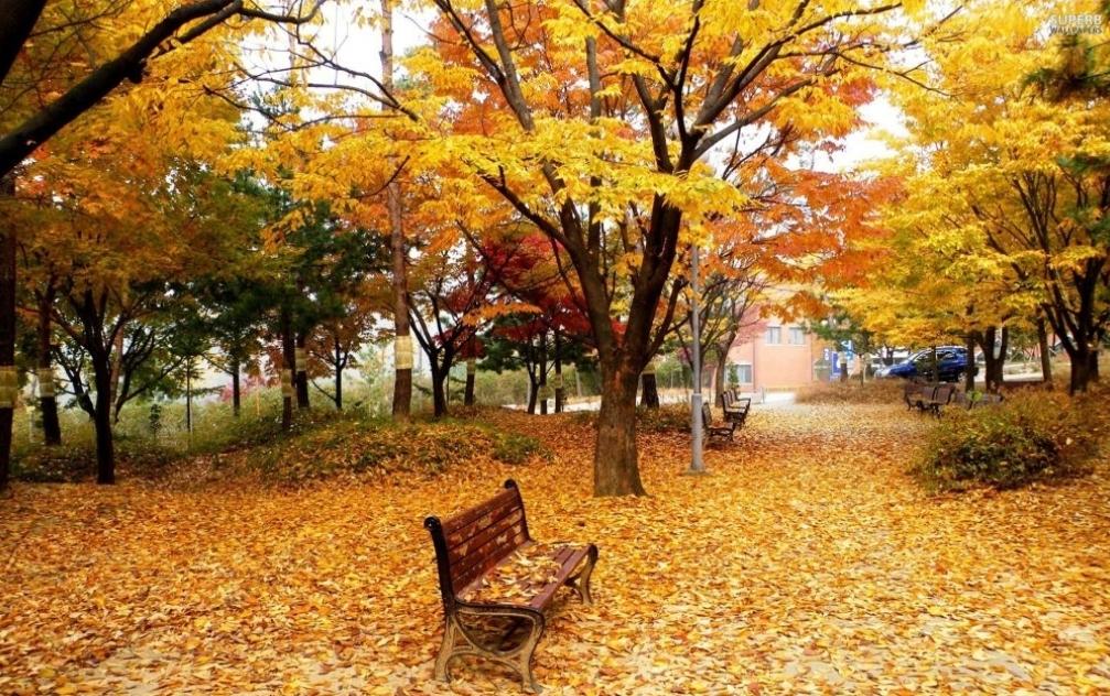 Десет најбољих пjесама о јесени (ВИДЕО)