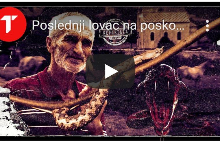 Драгиша Лечић из Љубиња лови змије голим рукама, од отрова чува и људе, и стоку (ВИДЕО)